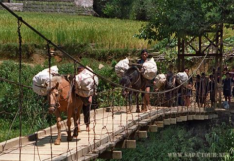 Lao Chai in Sapa