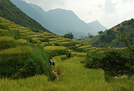 Sapa Valley Trekking