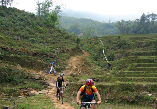Visit Sapa by Bicycle