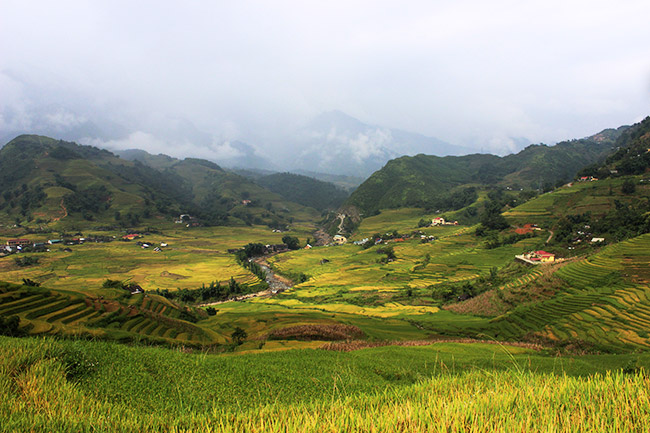 Muong hoa valley Sapa